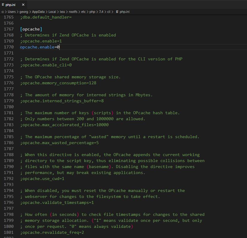 turning zend opcache OFF using code editor